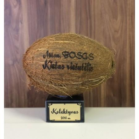 Graviruotas kokoso riešutas